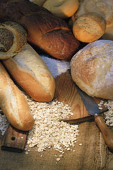 Group of wheat breads