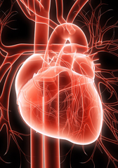Chelation therapy offers small, if any, benefit for heart disease