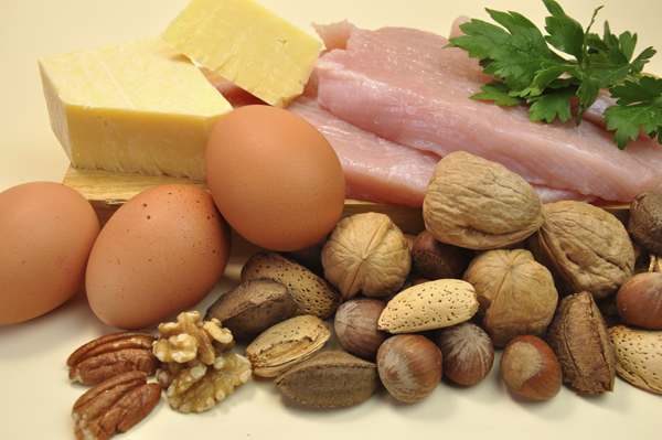 recommended grams of protein in your diet