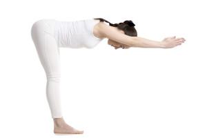 Standing Half Forward Bend (Ardha Uttanasana)