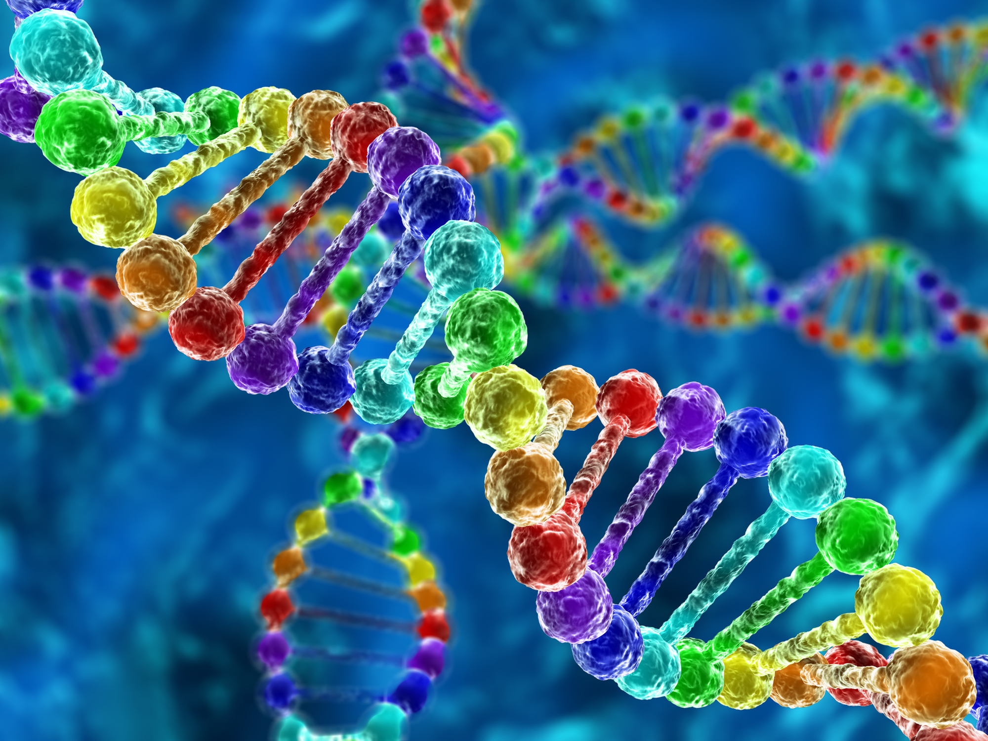 genetic disease project Genetic disorder research project eighth grade science project summary your job is to create an informative brochure that contains information about your assigned genetic disorder.