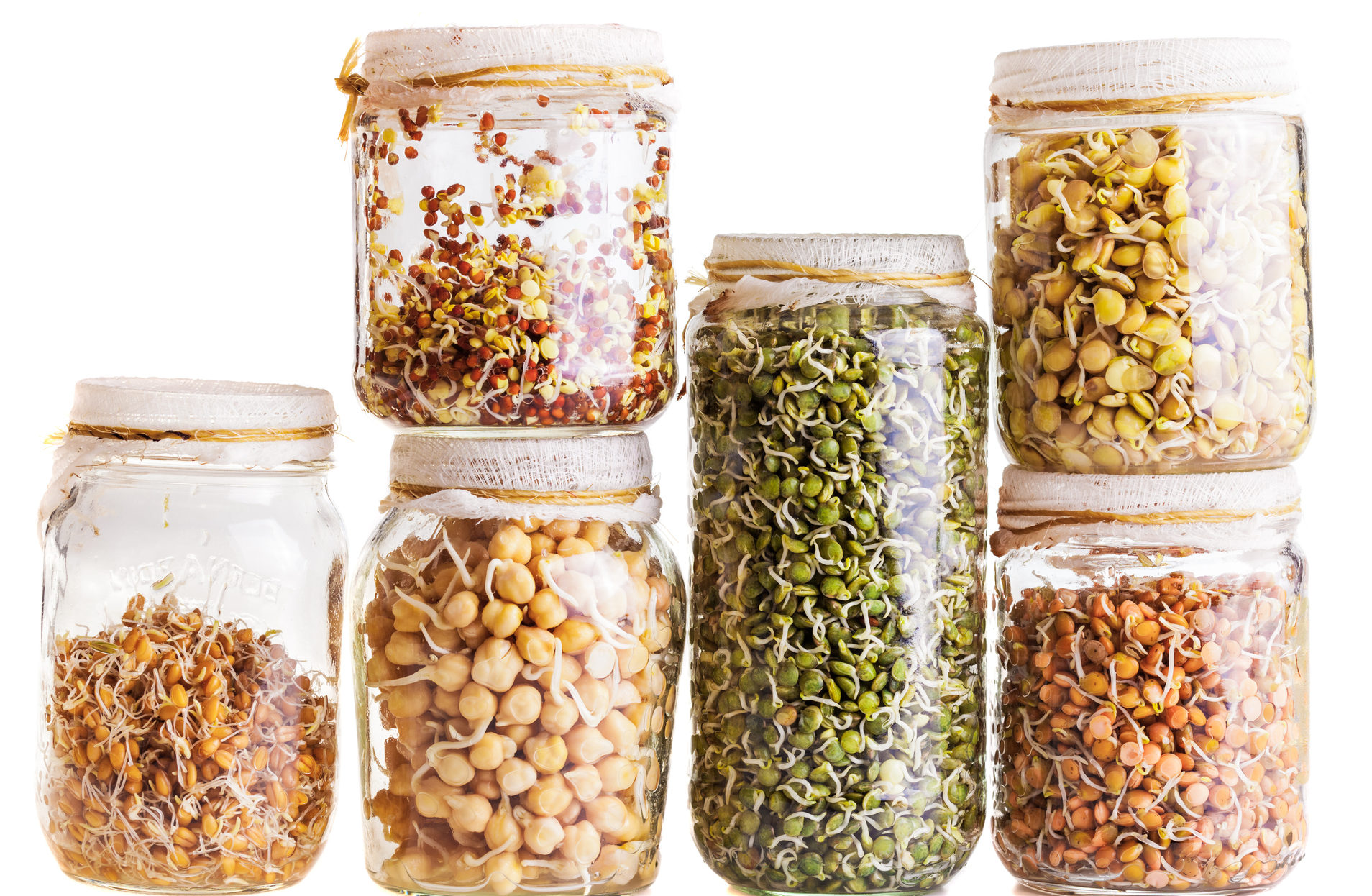 are sprouted grains more nutritious than regular whole grains