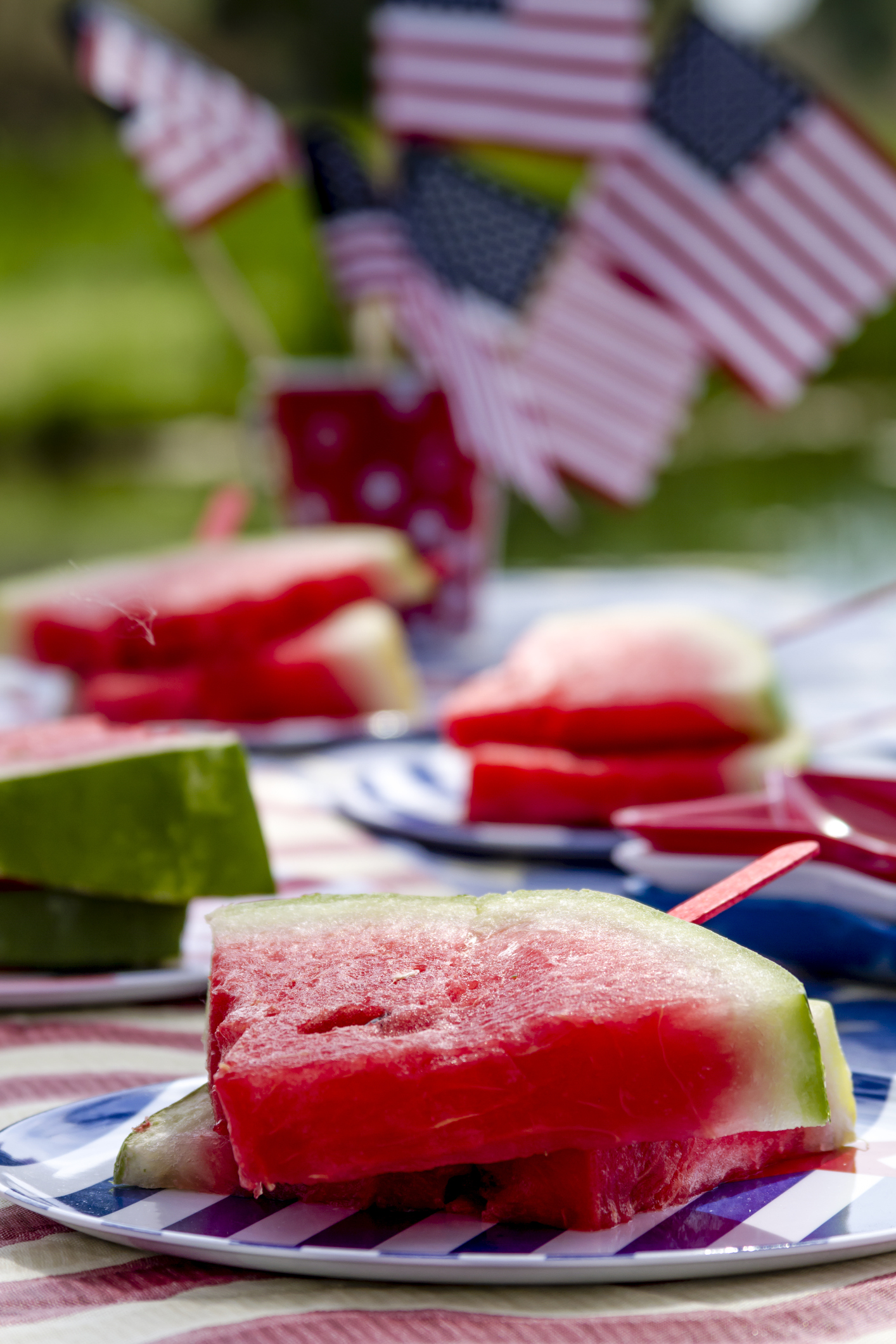 4th of July picnic