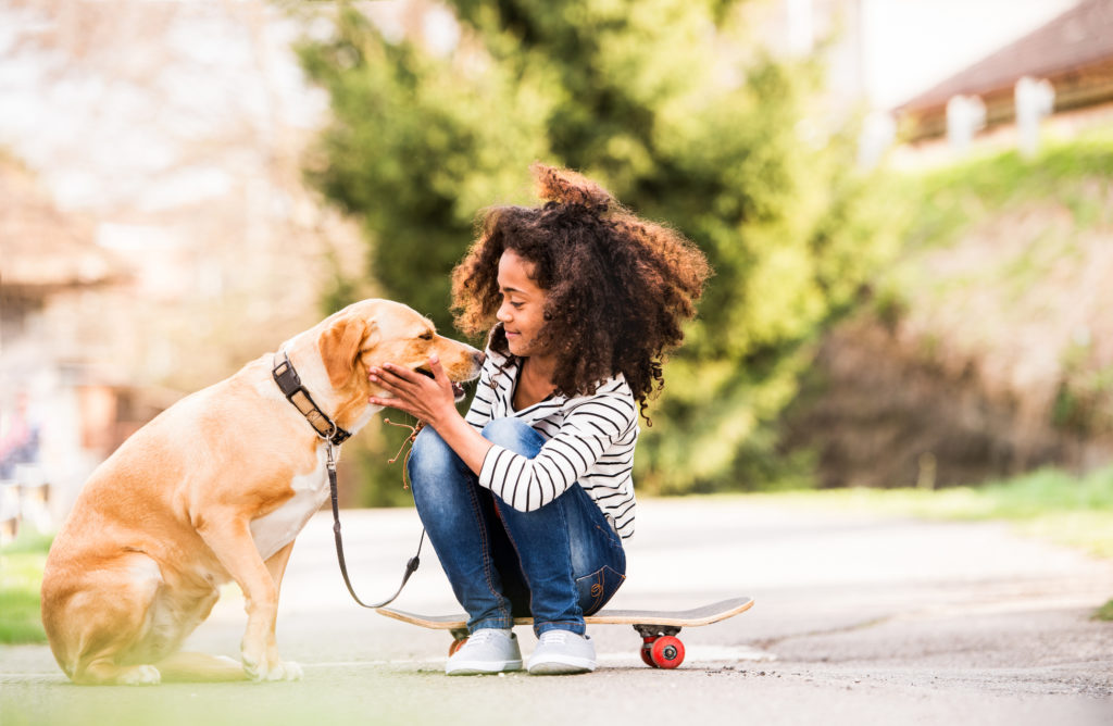 Dogs and health: A lower risk for heart disease-related