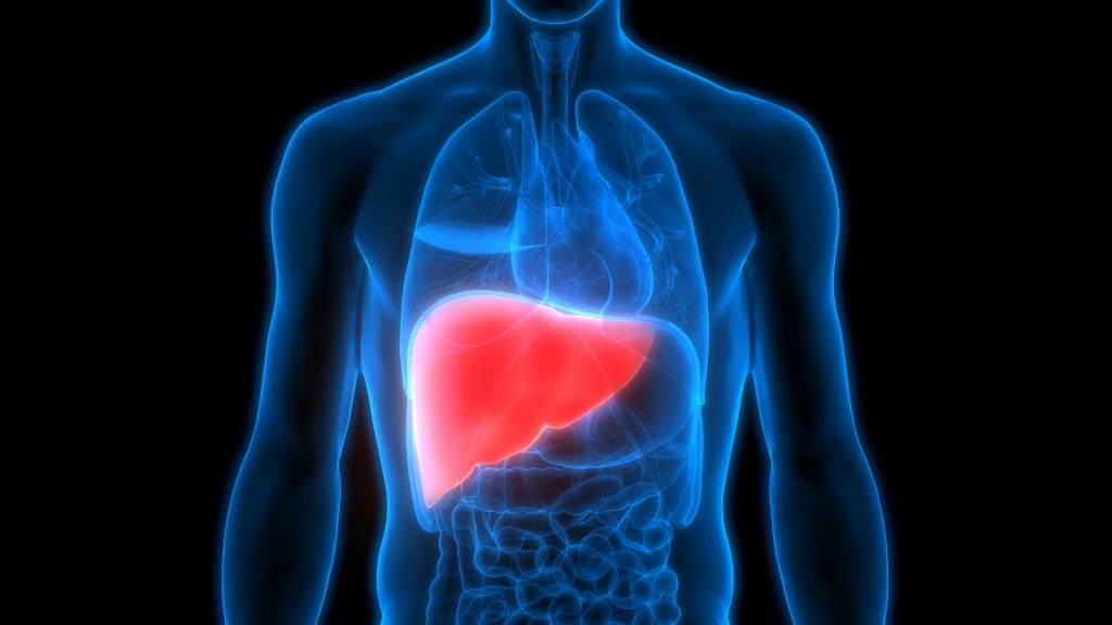 Fatty liver disease: What it is and what to do about it
