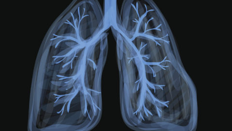 Illustration of lungs with vapor or smoke