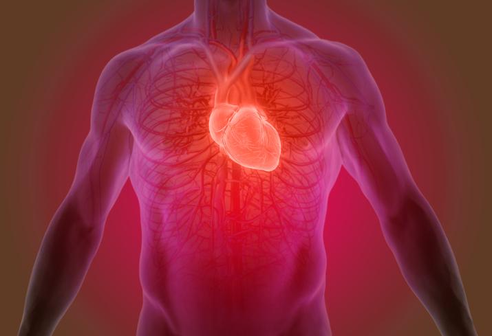 cathétérisme cardiaque cardiaque