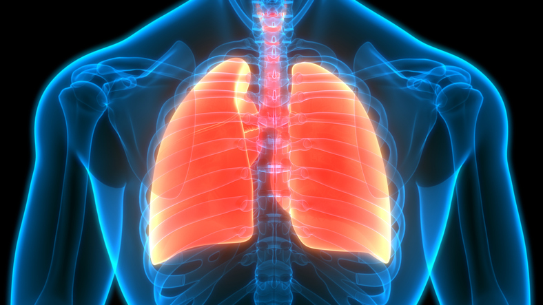 Proposed pointers prone to establish extra early lung cancers